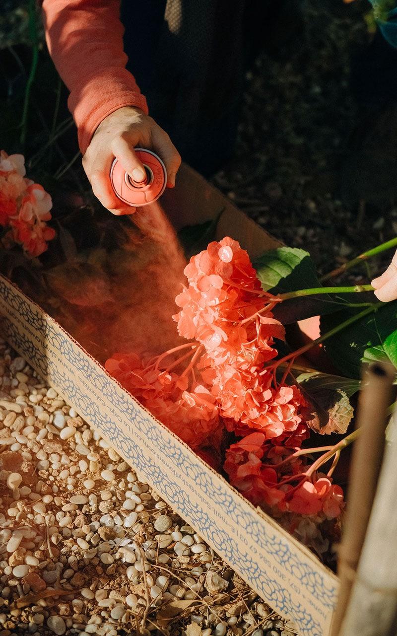 tecnica tintar flores